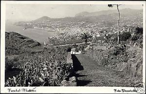 portugal, MADEIRA, Funchal, Panorama (1951) RPPC