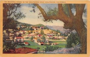 Hollywood California~Beautiful Homes in Hollywood Hills District~1942 Postcard