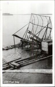 Alaska AK Fish Trap Real Photo Postcard