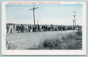 Pymatuning Lake Pennsylvania~Crowd Along Road at Spillway~Blue Sky~1940 Postcard