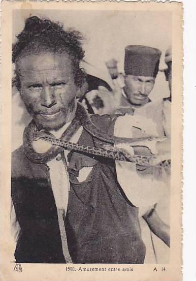 Amusement entre amis, man with snake , Algeria , 1920-30s
