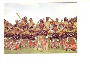 Te Roopu Manutaki Maori Group in Costume, Action Song, Auckland New Zealand, ...