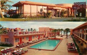 Miami Beach Florida~Sun Ranch Motel~Lots of Lounge Chairs 1955 Postcard