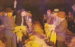 A Typical Tobacco Auction