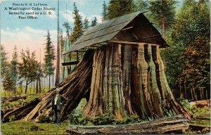 Washington Cedar Stump formerly US Post Office Unused Postcard G87
