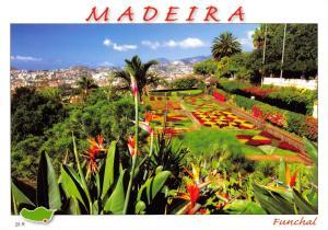 Postcard MADEIRA Funchal Flowers Gardens #321
