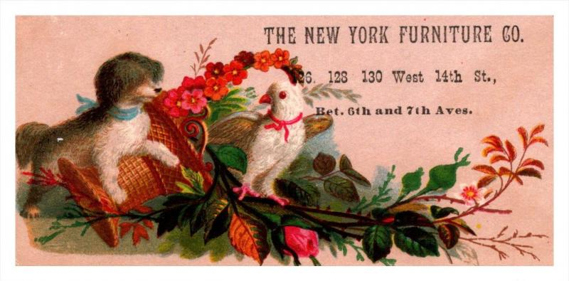 13235  Trade Card  NY City Furniture Co.  Puppy  and Bird