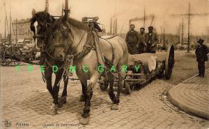 1920 Antwerp Belgium Postcard: Horses Pull Barrels Unloaded at Docks