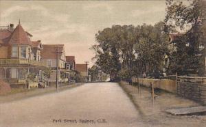 Park Street , Sydney , Nova Scotia , C.B. , , Canada , PU-1910