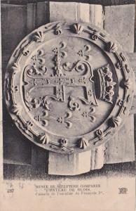 France Chateau De Blois Musee De Sculpture Comparee