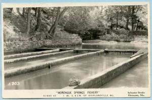 MO - Highlandville, Montague Springs Fishery    *RPPC