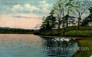 Fowl, Jamaica Pond Jamaica Plain MA Unused