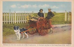 Canada Gaspe Habitant Dog Cart On The Gaspe Coast