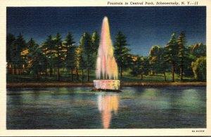New York Schenectady Fountain In Central Park Curteich