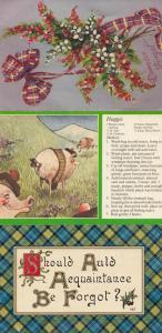 Scottish Scotland Antique Tartan Real Glitter Haggis Recipe 3x Old Postcard s