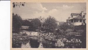 PORT ARTHUR, Ontario, Canada, 1900-1910's; Mc Vicar's Gardens