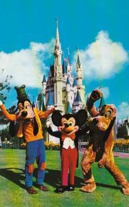 Florida Orlando Walt Disney World Mickey Pluto & Goofy Welcome Guests To Fant...
