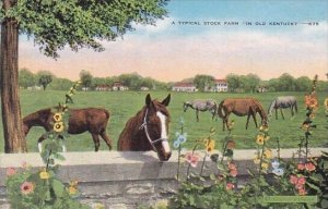 A Typical Stock Farm In Old Kentucky