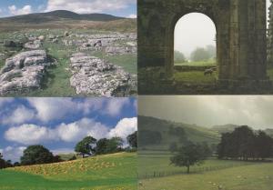 Dentdale Ingleborough Ribblesdale Sheep Bolton Abbey 4 Yorkshire Dales Postcard