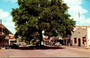 Florida Zephyrhills Main Street Looking Into The Heart Of Downtown