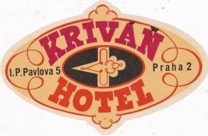 Czechoslovakia Praha Krivan Hotel Vintage Luggage Label sk4404