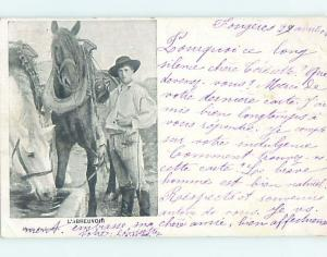 1904 foreign WHITE AND BROWN HORSE DRINKING OUT WATER TROUGH HL9460