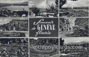 Geneve Swizerland, Schweiz, Svizzera, Suisse La Place Neuve, La Roseraie  La ...