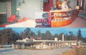 Rocky Mount North Carolina Mosely's Shady Lake Motel Vintage Postcard JI657957