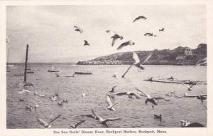 Massachusetts Rockport The Sea Gulls Dinner Hour Rockport Harbor Albertype
