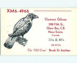 Crow Bird - Qsl Cb Ham Radio Card In Glace Bay Nova Scotia Ns Canada s0126