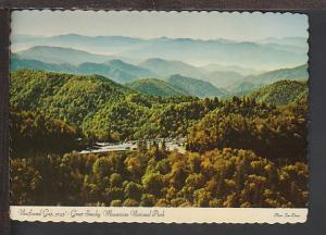 New Found Gap Great Smoky Mountains Postcard BIN