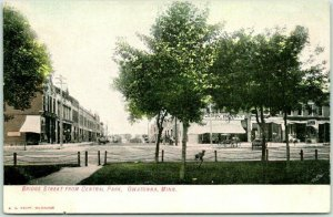 Owatonna, Minnesota Postcard Bridge Street from Central Park Downtown c1910s