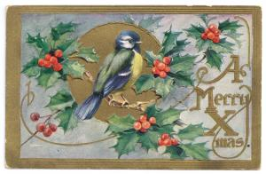 Blue Bird Holly Bough Embossed Gold 1911 Vintage Christmas Postcard Bluebird