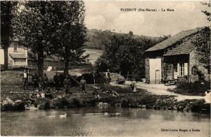 CPA Plesnoy - La Mare (277144)