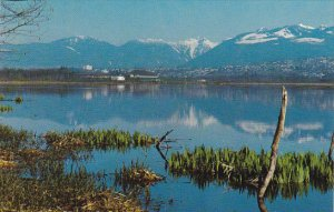 Canada View Of Burnaby Lake British Columbia