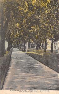 Warrensburg Missouri~Normal School Campus~Lovers' lane~CH Harrison~1909 Postcard