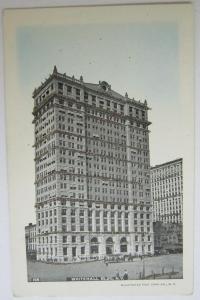 Whitehall Building NYC NY Undivided Back Glitter