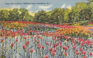 Rhode Island Providence Tulip Time In Roger Williams Park 1940