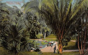 Jamaica, Jamaique Post card Old Vintage Antique Postcard Castleton Gardens Un...