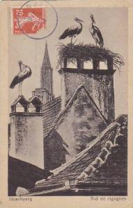 France Strasbourg Nid De Cigognes 1919