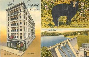 Linen Card of Hotel St. James Knoxville Tennessee TN