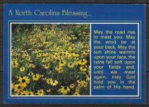 North Carolina - A Gaelic Blessing - [NC-092X]
