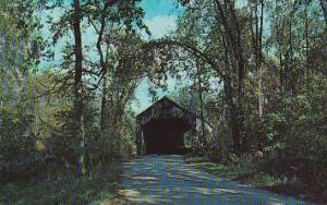Covered Bridge Old Covered Bridge Barandon Vermont