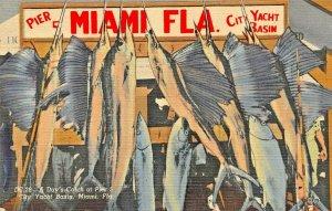 MIAMI BEACH FL~A DAY'S CATCH OF SWORD FISH-PIER 5-CITY YACHT BASIN~1949 POSTCARD