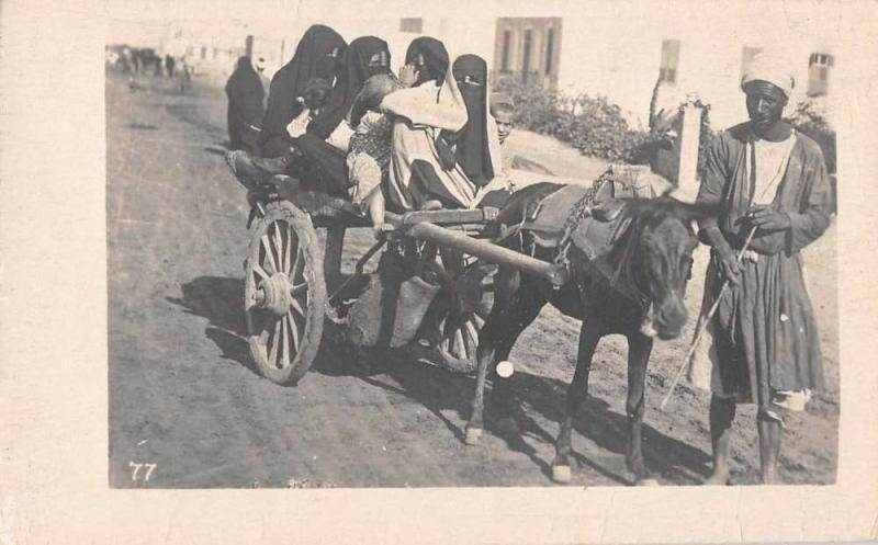 Egypt Street Scene Horse Cart Real Photo Antique Postcard J56003