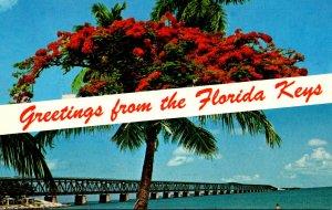 Florida Keys Greetings Showing Royal Poinciana Tree & Bahia Honda Bridge