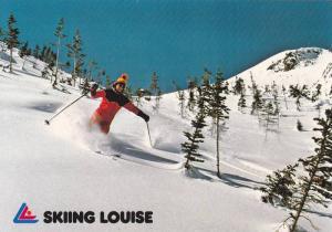Skiing through the treetops,  Lake Louise,  Alberta,  Canada, 50-70s