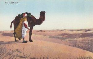 Camel , SAHARA , 00-10s