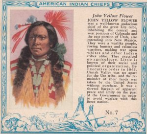 TC: RED MAN Chewing Tobacco Trade Card , 1890s ; American Indian Chiefs ; JOH...