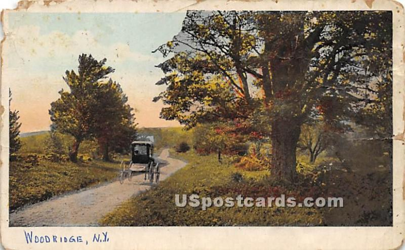 Road Scene Woodridge NY 1925 missing stamp